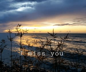 gif, citas, and i miss you image