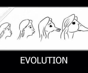 evolution, pictures, and مُضحك image