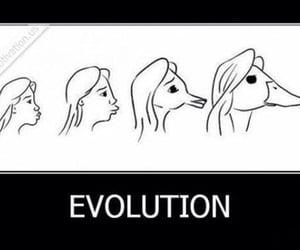 meme, مُضحك, and evolution image