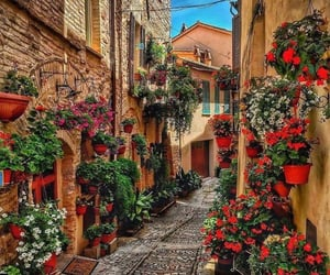 italy, flowers, and street image