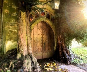 autumn, door, and enchanted image