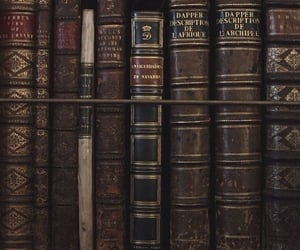 book, aesthetic, and dark image