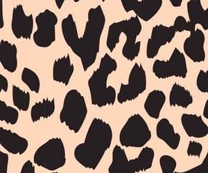 animal, animal print, and leopardo image