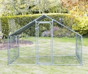 backyard chicken coop image