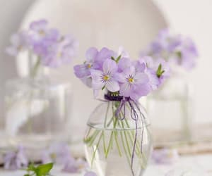 flowers, lavender, and light image