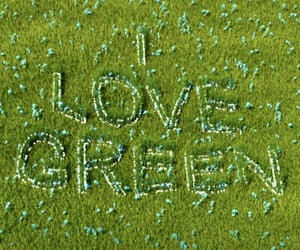 green, meadow, and love image