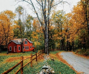 autumn, autumnal, and cottage image