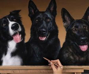 arte, perro, and hiperrealismo image
