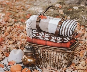 autumn, fall, and picnic image