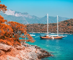 autumn, beach, and travel image