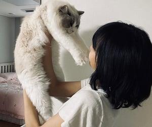 cat, girl, and lisa image