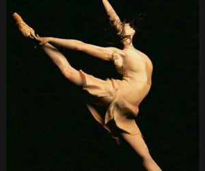 ballet, flesh and bone, and dance image