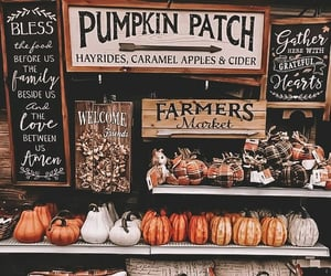 fall, autumn, and decoration image