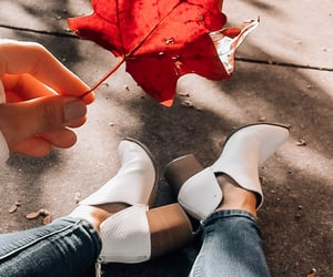 fall, fall style, and fall foliage image