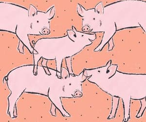 drawing, pig, and pink image