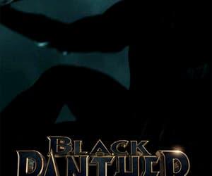 black panther, gif, and chadwick boseman image