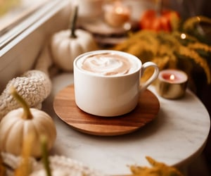 beverage, drink, and fall image
