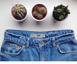 cactus, jeans, and vintage image