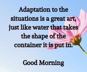 good morning all images image