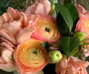 florals, flores, and peachy image