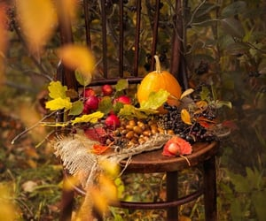 autumn, leaves, and pumpkins image
