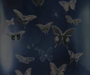 butterfly, aesthetic, and blue image