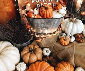 article, goals, and fall aesthetic image