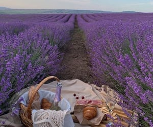 picnic, croissant, and flowers image