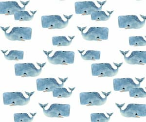 design, pattern, and whale image