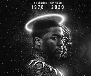 rest easy, chadwick boseman, and 🌹 image