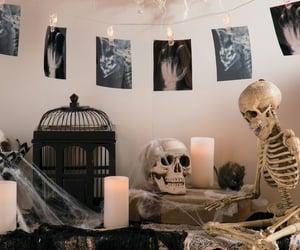 fall, Halloween, and fall aesthetic image
