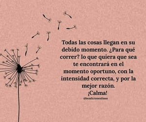 frases and phrases image