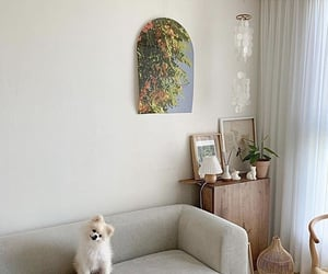 aesthetic, minimal, and pets image