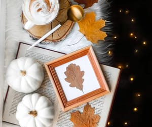 aesthetic, fall, and white pumpkins image