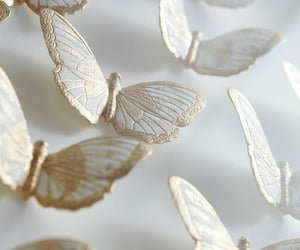 butterfly, white, and gold image