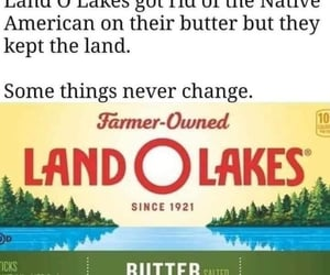 land o lakes image