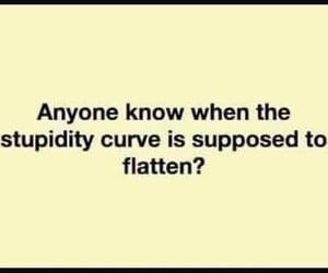 stupidity curve and stupid=trump image