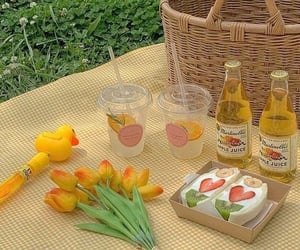 aesthetic, food, and picnic image