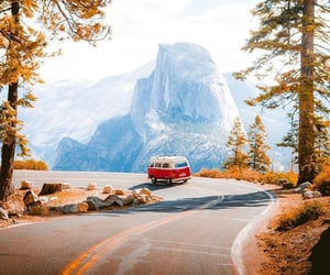 adventure, highway, and leaves image