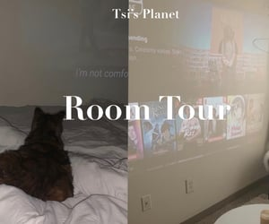 room decor, college room, and cheap room decor image