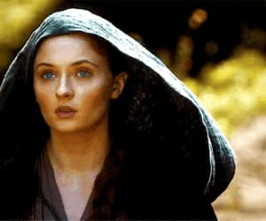 blue eyes, tv show, and sansa stark image