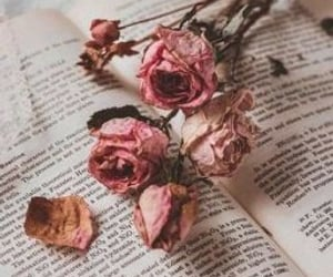 book, background, and flowers image