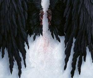black, dark, and wings image