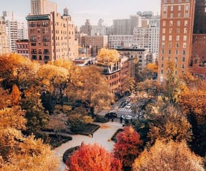 autumn, fall, and city image