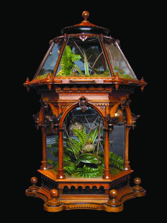 antique and victorian terrarium image