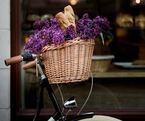 flowers, basket, and bicycle image