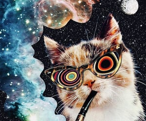 cat, galaxy, and psychedelic image