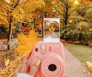 autumn, photo, and fall image