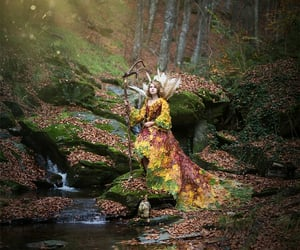 belleza, bosque, and hada image
