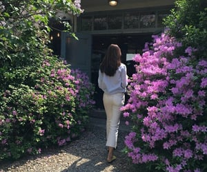 fashion, flowers, and garden image